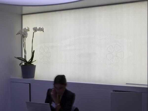 Paris Automobile Convention 2012 . Renault booth-3
