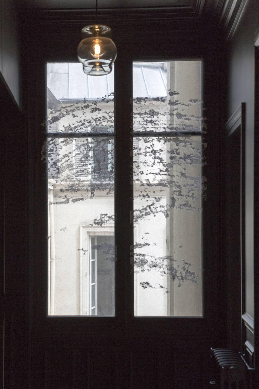 """Panneaux japonais transparents """"Céleste 2"""" - exemple de réalisation 6"""