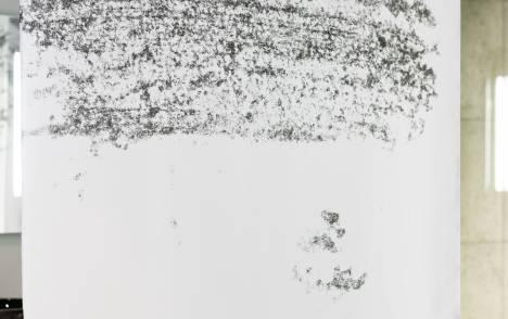 """Panneaux japonais transparents """"Céleste 1"""" - exemple de réalisation 5"""