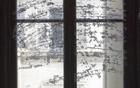 """Panneaux japonais transparents """"Céleste 2"""" - exemple de réalisation 5"""